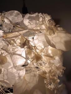 Snow-leaf-1-2.jpg
