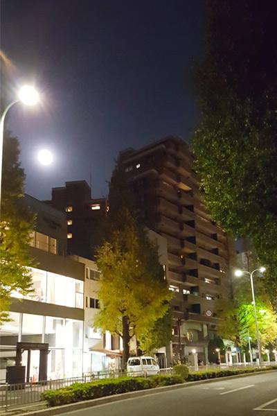 blog-shirokane-1
